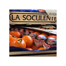 Photo de Mandarine soculente