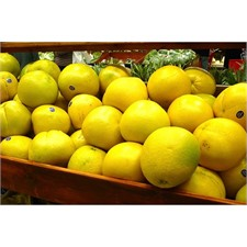 Photo de Pomelo